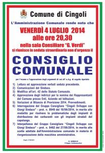 2014_07_04_Consiglio_Comunale-