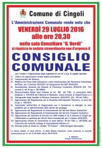 2016-07-29 Manifesto Consiglio Comunale